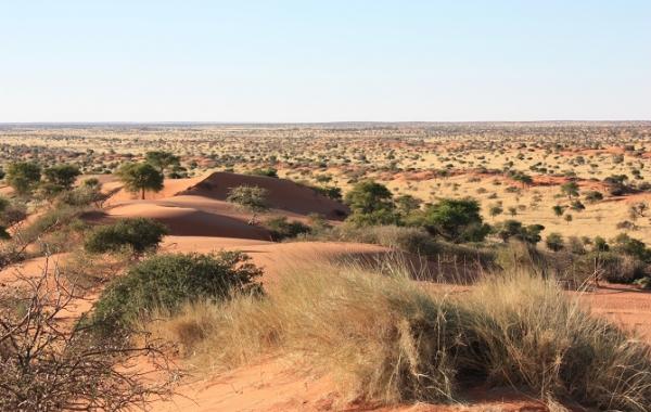 Kalahari Experience 10 Day Tour