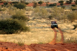 Anib Kalahari Nature Drive