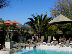 The Elegant Guesthouse pool & loungers