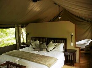 Botswana Maun Royal Tree Lodge