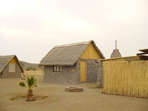 Messosaurus Fossile Camp