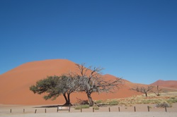 Sossusvlei the magic photo opportunity