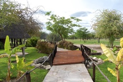 Grootfontein area