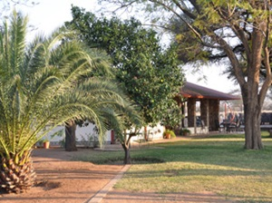 Dornhügel Guestfarm