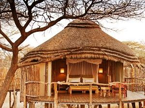Onguma Treetop Camp